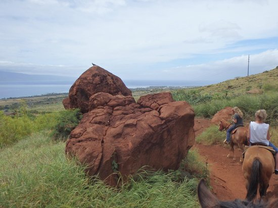 Lahaina Stables: Lava rock formation.