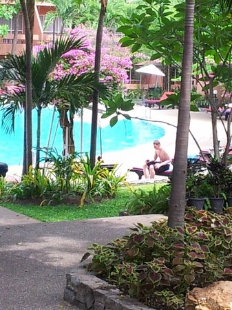 Loma Resort & Spa : Garden