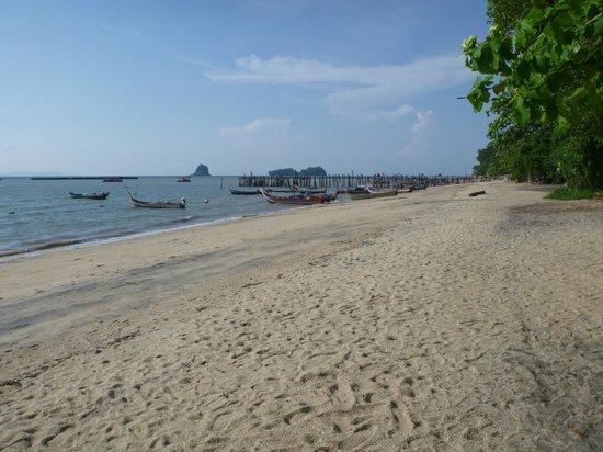 Black Sand Beach: Pic 1