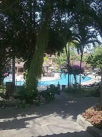 Loma Resort & Spa: Garden