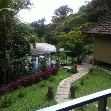 J Residence: view from room