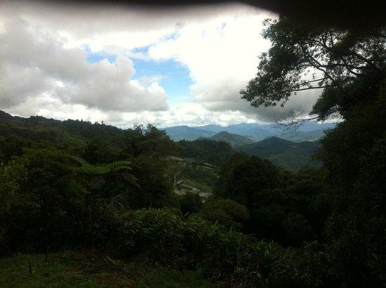 J Residence: mountain view