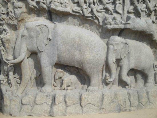 Arjuna's Penance : Lord Indra's mount- Airavata