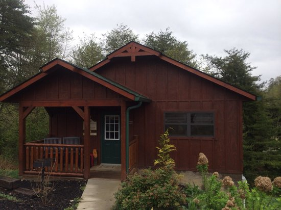 shady cove cabin picture of dollywood pigeon forge