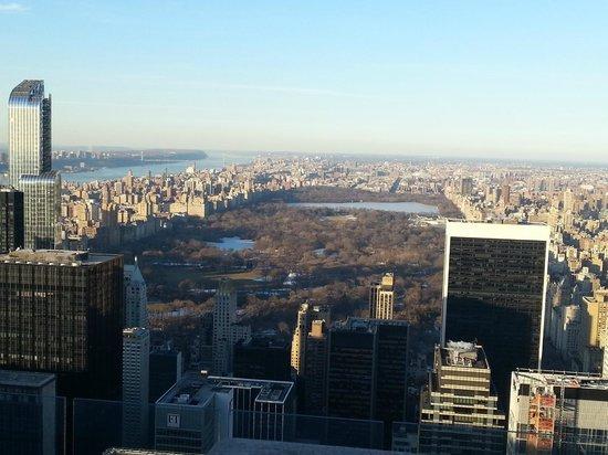Plate-forme d'observation du GE Building : Central Park desde el Top