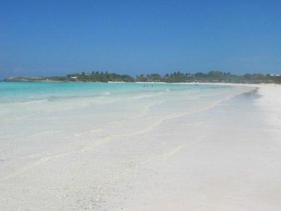 Hotel Colonial Cayo Coco : arena blanca en la playa