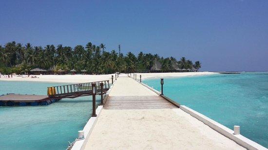 Alimatha Aquatic Resort: panorama isola