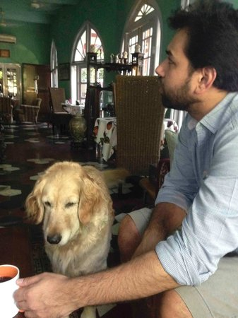 Ranjit's SVAASA: Spending time with Lady the Golden Retriever