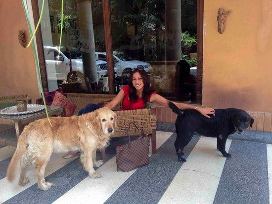 Ranjit's SVAASA: Lady and Zara saying bye to us