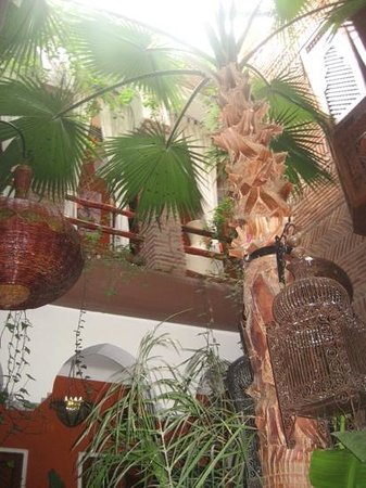 Riad CharCam: vue d en bas