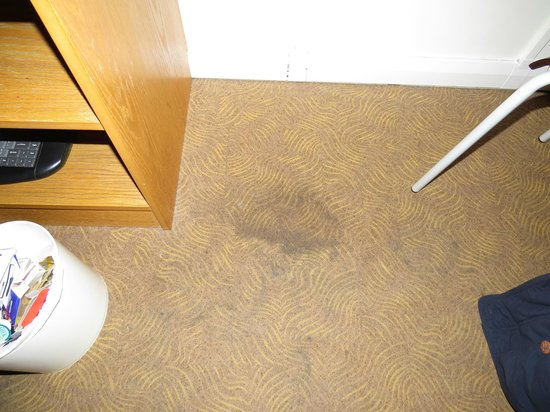 Ibis Rotherham East: carpet in front of television table