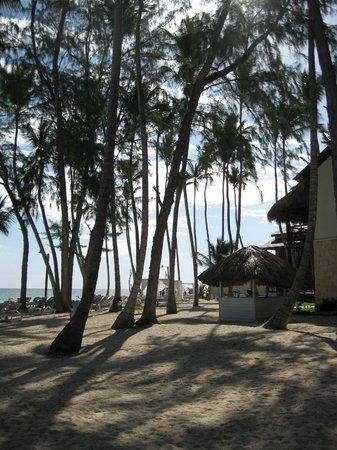 Vista Sol Punta Cana: la mer