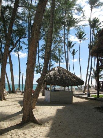 Vista Sol Punta Cana: bar de la plage