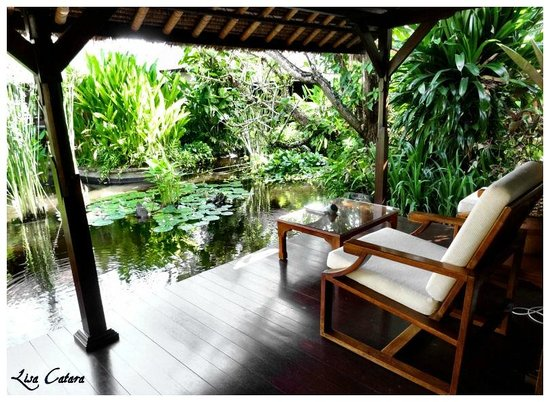 The Watergarden Hotel & Spa : View from my bungalow