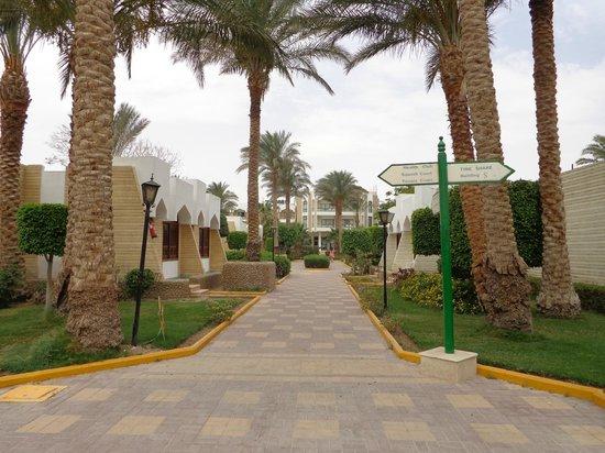 Regina Resort : Hotel territory