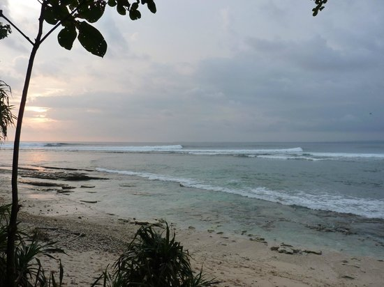 Lovina Krui Surf: Ujong Bocor