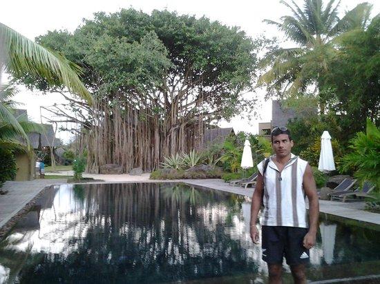 Beachcomber Trou aux Biches Resort & Spa: piscina interna