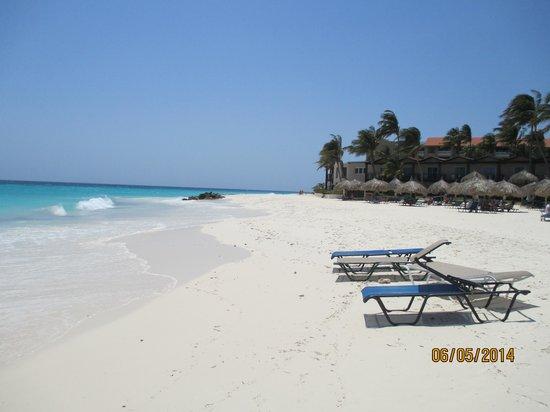 Divi Aruba All Inclusive: Parte della spiaggia