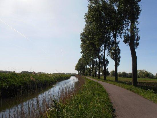 Spoor.62 B&B: de polders