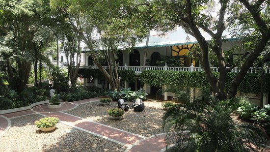 Hotel Caribe : Gardens