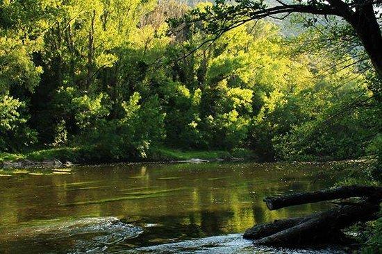 Domaine de Miravel: riviere