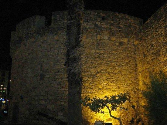 Cesme Castle: Castle