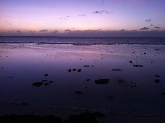 Black Rock Beach: perfect purple