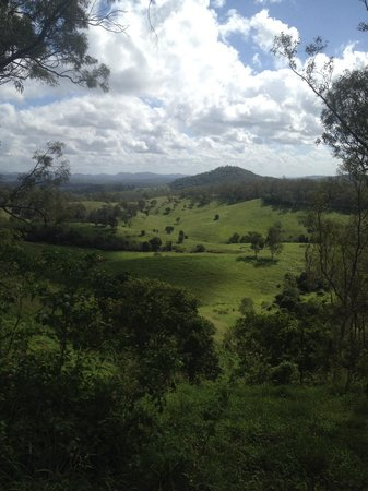 Brooloo, Australia: The view from the property's walking track