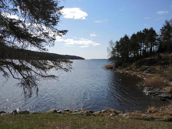Dacha Wintera: Озеро