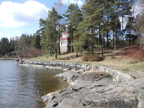 Dacha Wintera: Берег озера