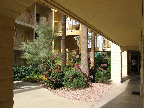 La Quinta Inn Phoenix Sky Harbor Airport: Courtyard