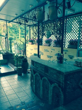 Villa Arianna: сад