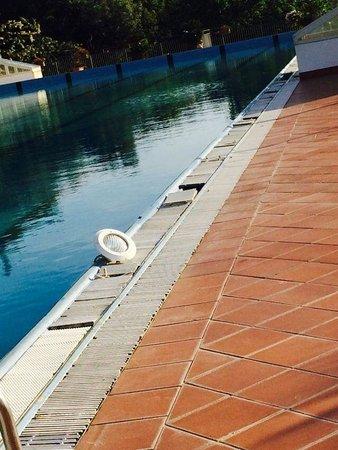 Hotel San Leonardo Vibo: taglienti pattonelle sul bordo piscina