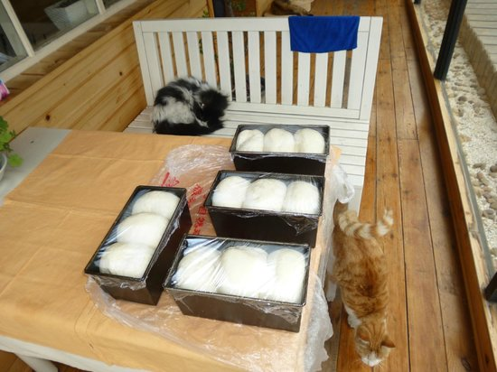 Great Wall Box House (Beijing): Home made bread proving for tomorrows breakfast