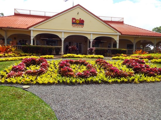 Oahu Spot Tours: Dole Plantation - you must get the pineapple ice cream!