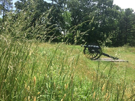Petersburg National Battlefield Park: Grasses & Cannon
