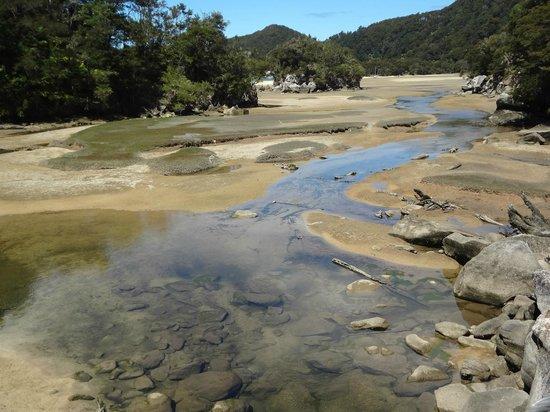 Wilsons Abel Tasman: Streams under swing bridge leading to sea