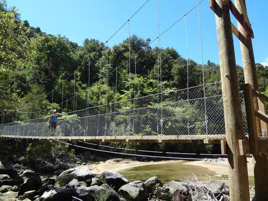 Wilsons Abel Tasman: bridging paradise bays to heavenly forests