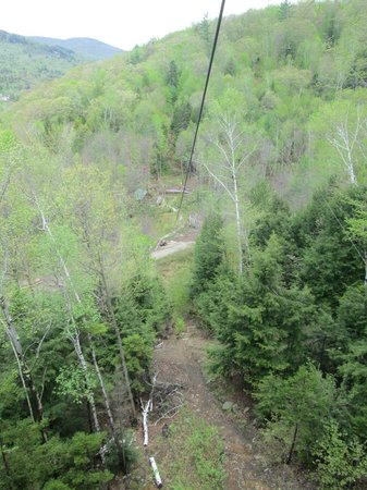 Alpine Adventures Outdoor Recreation : White Knuckle Pine -- 80ft. drop before line levels out.