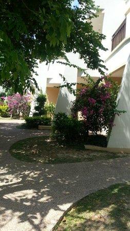 Lanta Resort: +++