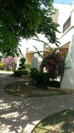 Lanta Resort: Blumen
