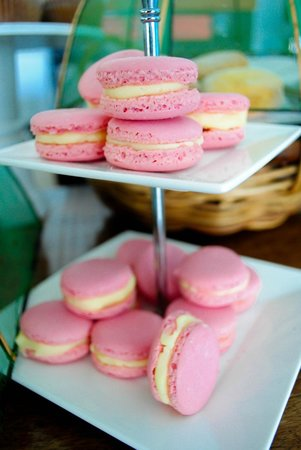 Taste Fiji Kitchen: Macaroons...yup! These guys are just amazing people!