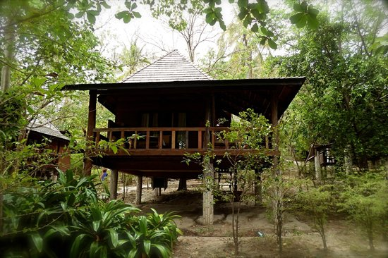 Sensi Paradise: bungalow