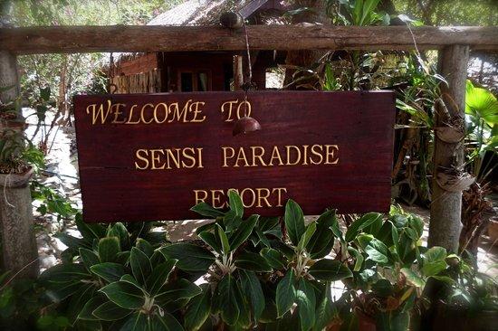 Sensi Paradise: arrival