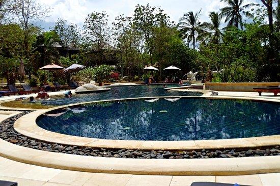 Sensi Paradise: pool