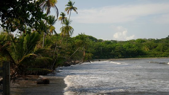 Coconut Cove Holiday Beach Club : Возле отеля