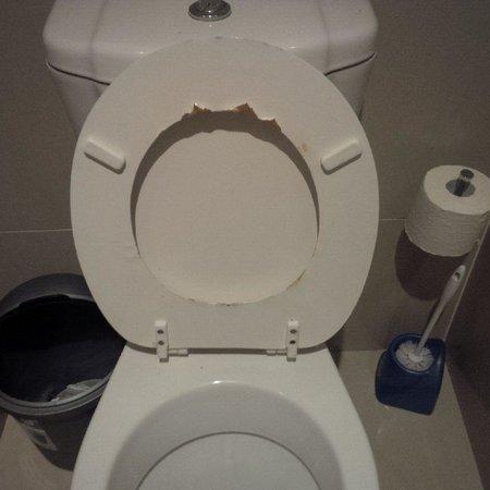 Dolphin Crest: Toilet had it better days