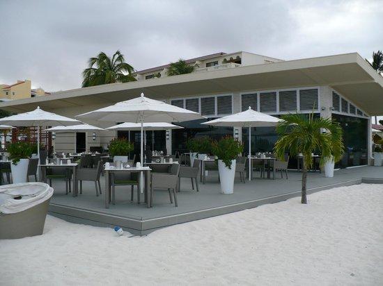 Bucuti & Tara Beach Resort Aruba : Elements