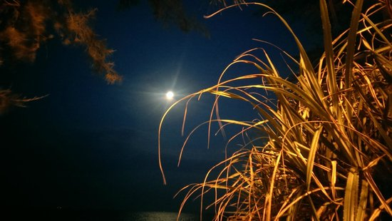 Anjung Selesa Guest House: Beach at night time