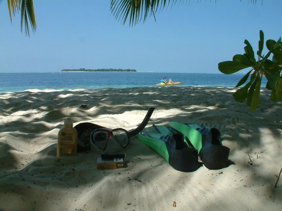 Vilamendhoo Island Resort & Spa : the beach
